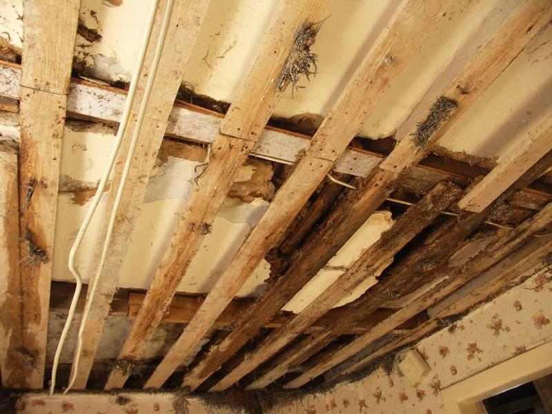 Dusche Ohne Wanne Aufbau : 02.07.2010 - Decke mit Verlattung
